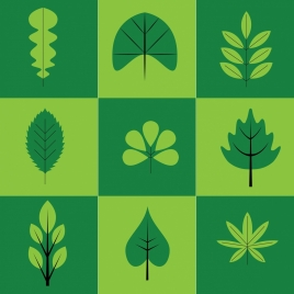 herbs icons collection green leaves types isolation