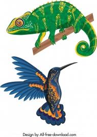 iguana bird icons colorful modern design