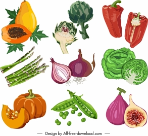 ingredient vegetable icons colored retro design