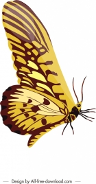 insect background butterfly icon shiny colorful closeup design