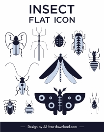 insects creatures icons black white flat design