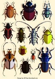 insects design elements bugs species icons colorful design