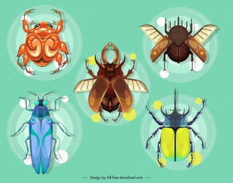 insects species icons colored modern design