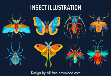 insects species icons colorful flat sketch