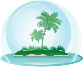 island with a coconut tree