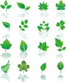Leaf design element set