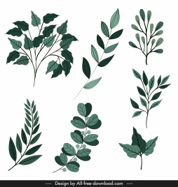 leaf icon classic green shapes sketch