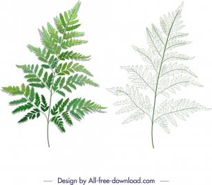 leaf icons green sketch modern design