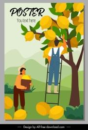 lemon crop poster huge fruits cartoon sketch