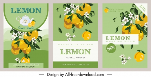 lemon products flyer templates colorful classic elegance
