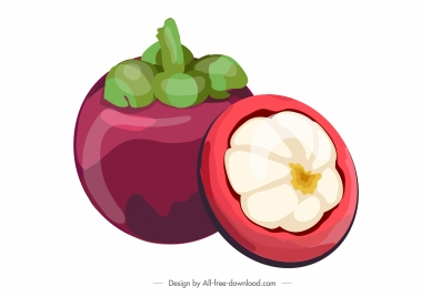 mangosteen fruit icon colored classic design cut sketch