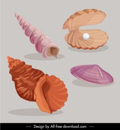marine shell icons colored classic sketch