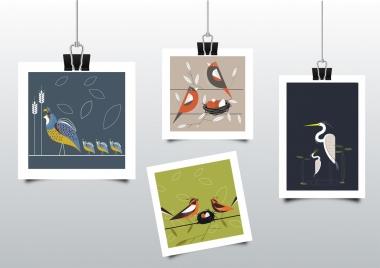 memories background birds pictures icons decor