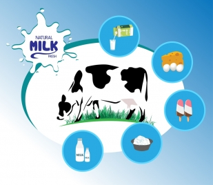 milk products infographic cow food icons decoration