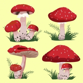mushroom icons isolation red cone shapes cartoon design
