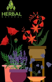 natural herbs background colorful flowers icons dark design