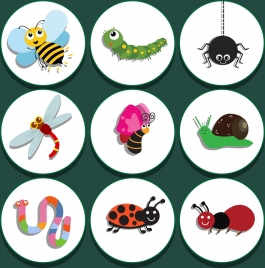 natural insect icons isolation colored stylized design