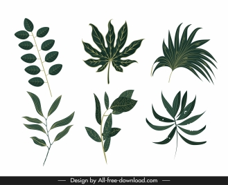 natural leaf icons green classic sketch