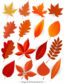 natural leaf icons modern design