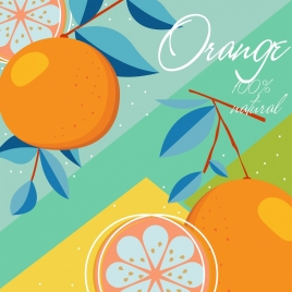 natural orange advertising banner multicolored handdrawn sketch