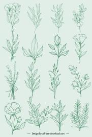 natural plants icons classic handdrawn botany leaf sketch