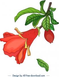 nature background pomegranate flower fruit icons decor