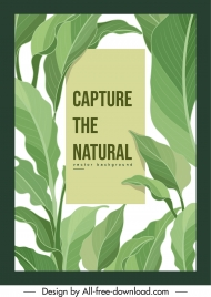 nature background template bright green leaves decor