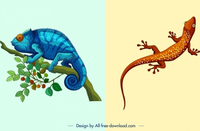 nature background templates chameleon gecko icons colored design