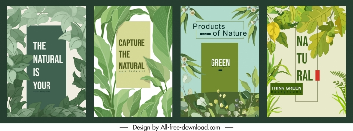 nature background templates classical green leaves sketch