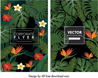 nature background templates dark colorful flower leaves ornament