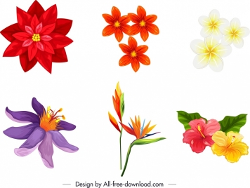 nature design elements colorful flora icons