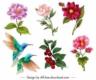 nature design elements flora birds icons sketch