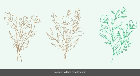 nature design elements handdrawn botany sketch