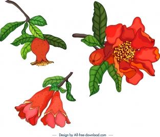 nature design elements pomegranate theme fruit flowers icons