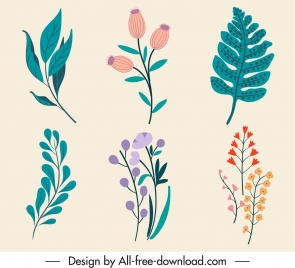 nature elements icons classical handdrawn botany leaf sketch