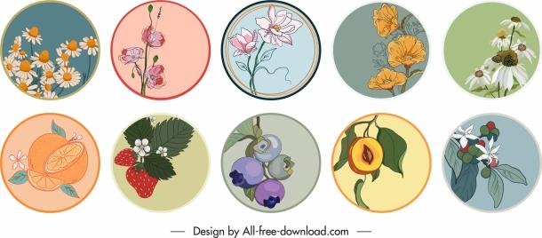 nature elements labels templates elegant classical flowers fruits