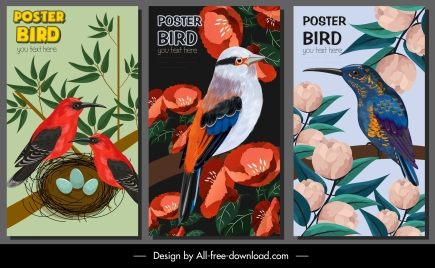 nature posters templates colorful classic bird floras design