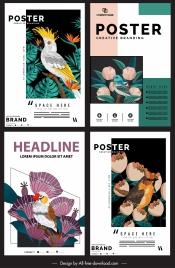 nature posters templates flora birds species decor