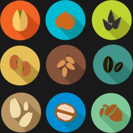 nut bean icons collection various colored types isolation