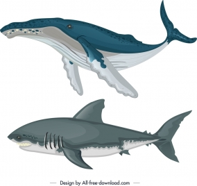 ocean design elements whale shark icons colored sketch