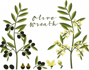 olive tree icons green design