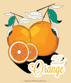 orange fruit advertisement colored classical flat sketch