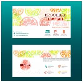 orange fruit brochure template