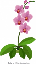 orchid icon green violet sketch