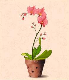 orchid pot drawing 3d retro design