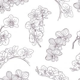 orchids background black white handdrawn sketch