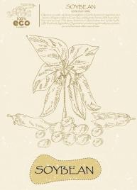 organic soybean advertising handdrawn icon draft