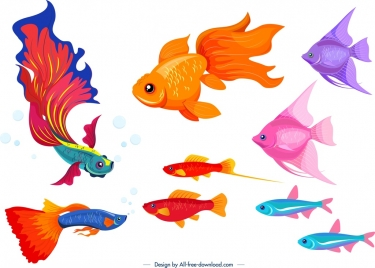 ornamental fish icons colorful species design