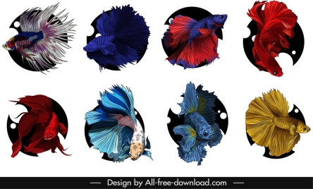 ornamental fish icons colorful swimming sketch