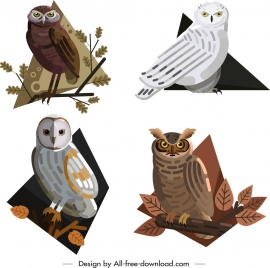 owl animals icons colored cartoon design